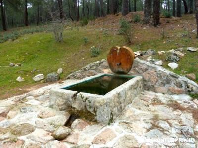 Pinares, Riscos y Atalayas; rutas en madrid senderismo; naturaleza viajes